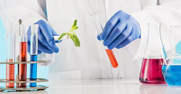 Biyokimya Testleri